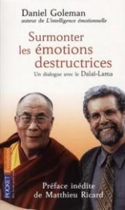 le livre surmonter les emotions destructrices de Daniel Goleman